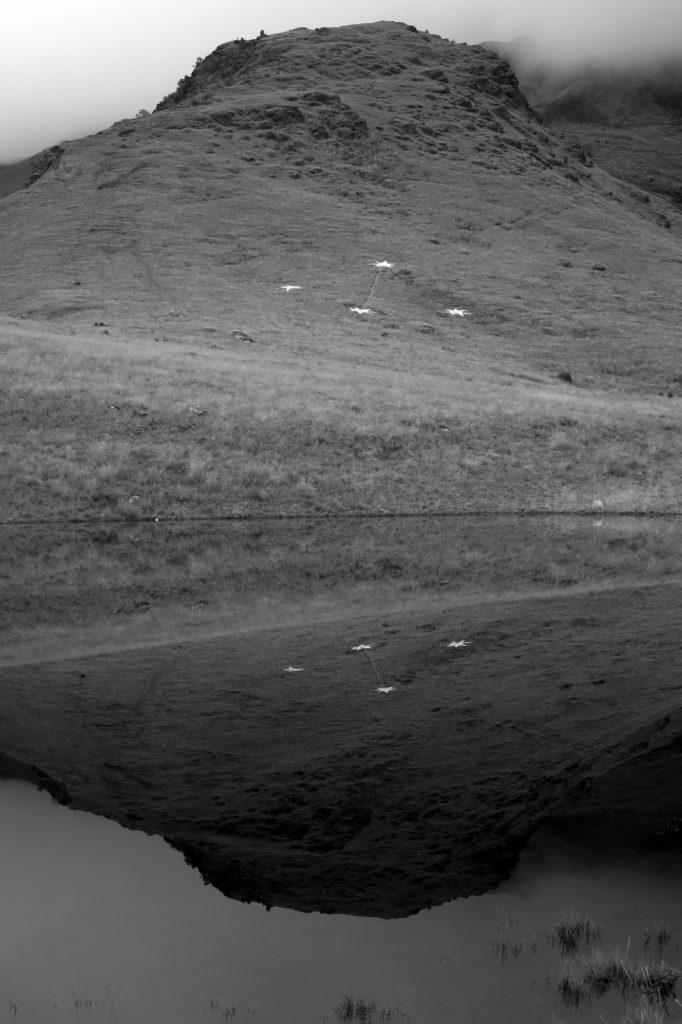 K27521 Cruz del Sur en la tierra #2