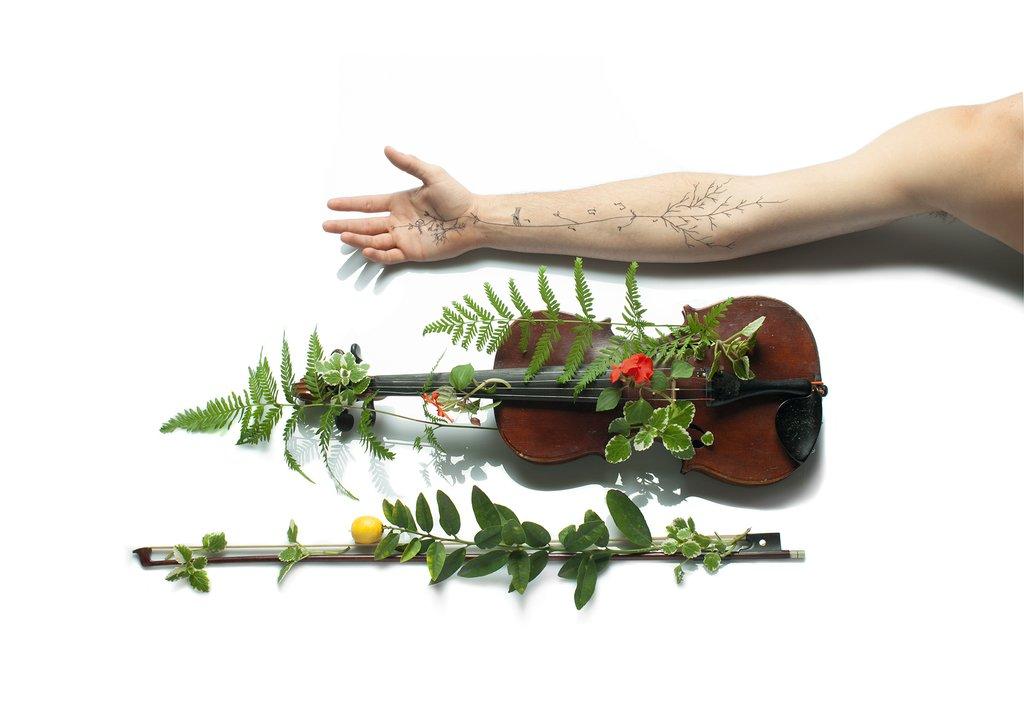 Cuerpo sonoro - Modulor violín