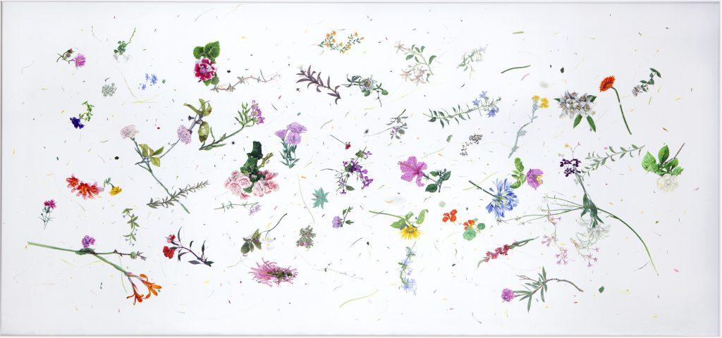 K26341 Les sirve de algo a las flores su perfume