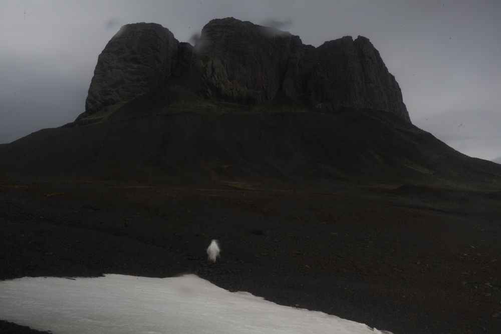 K27228 Sin título- Serie Errantes de la Antártida